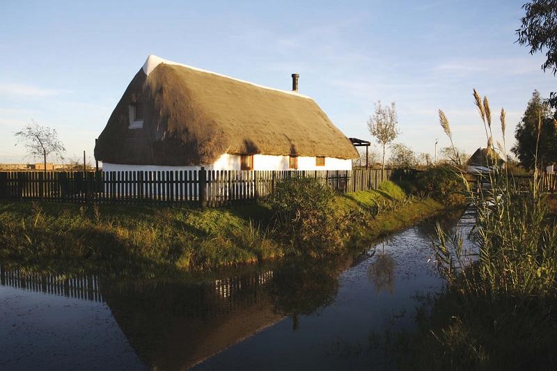 Barraca habilitada com a Casa de Turisme Rural, al Parc Natural del Delta del Ebre - Deltebre (@font - Miguel Raurich).jpef