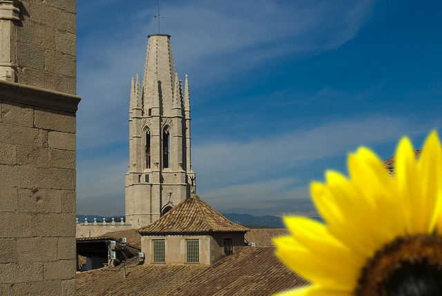 Girona Temps de Flors © jqmj Queralt