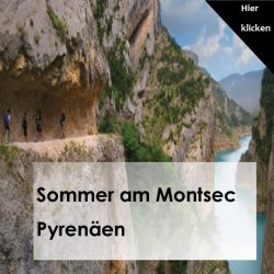 Sommer am Montsec