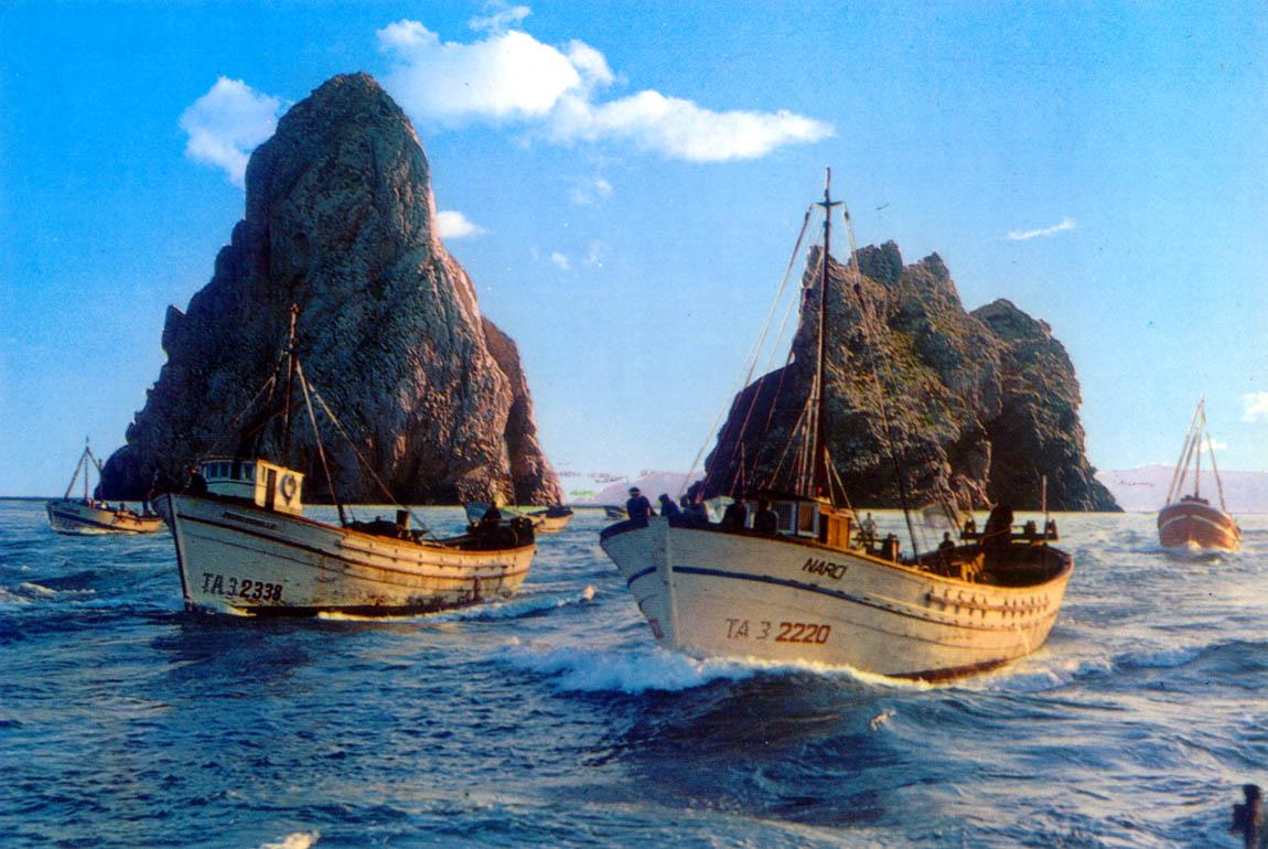 Die Medas-Inseln - Wahrzeichen von L'Estartit ©Miquel Graells