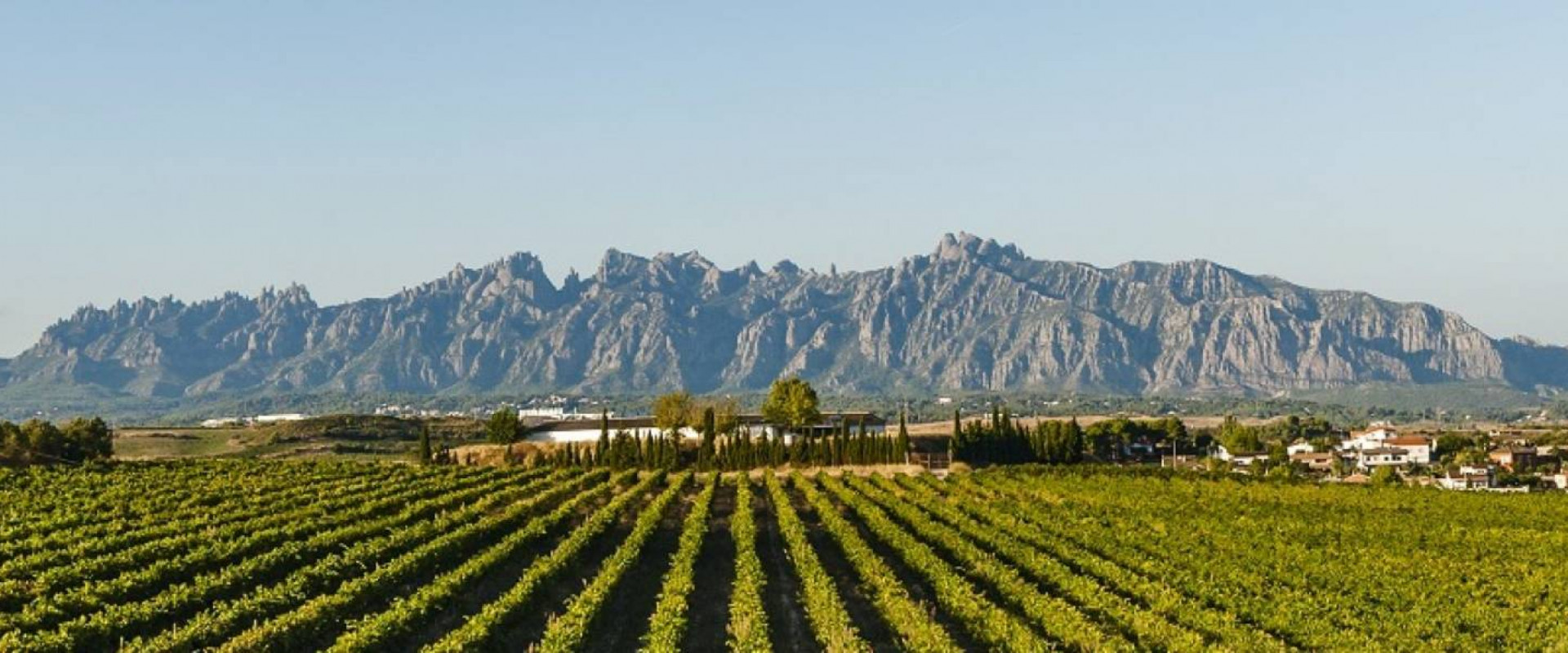 Weintourismus in Katalonien