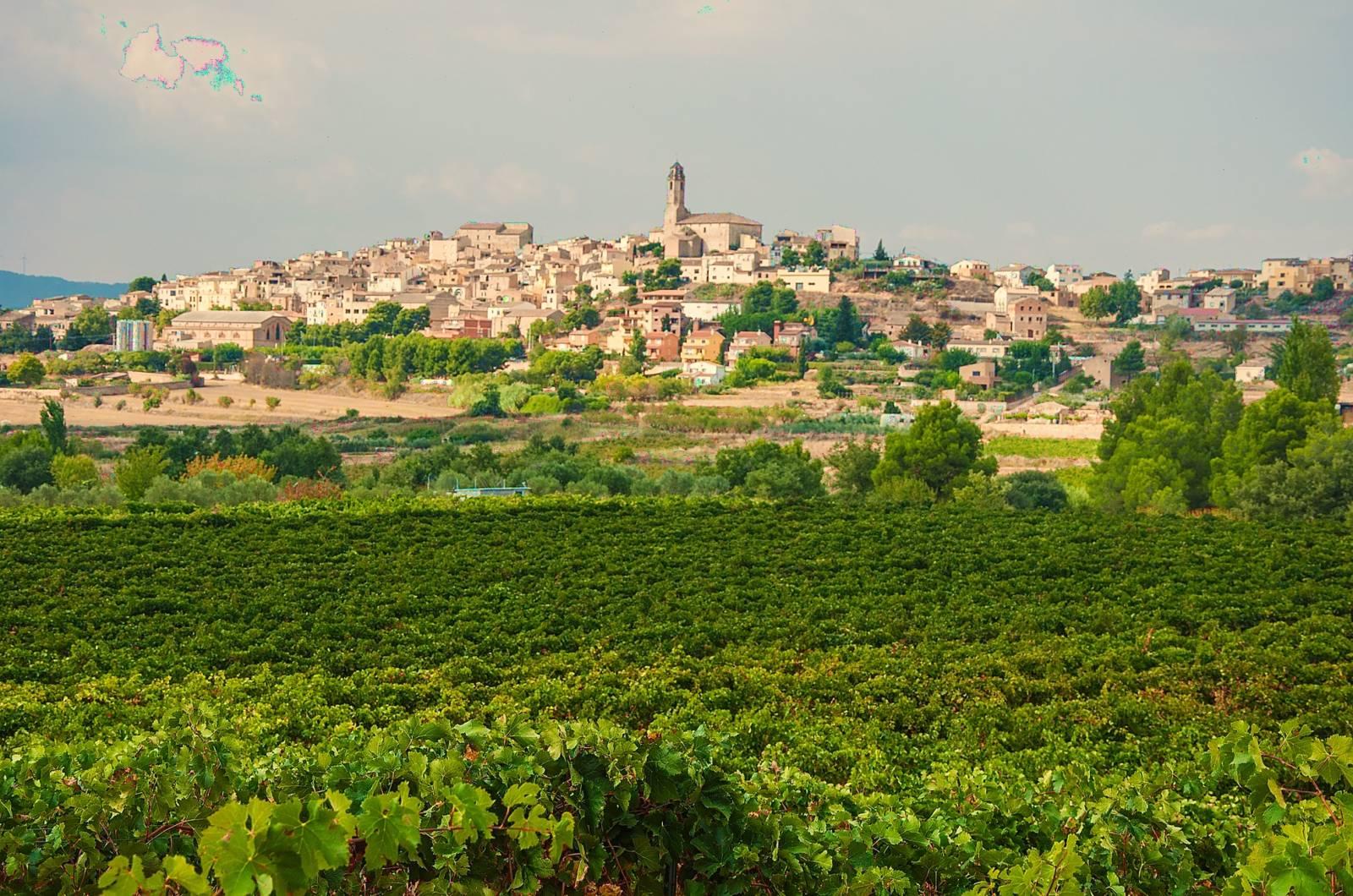 Conca de Barberà Katalonien Weingebiet
